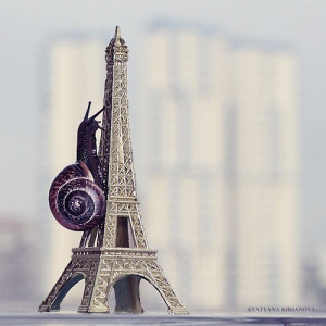 Funny Quotes Eiffel Tower Coloring Pages 1200 X 1137 143 Kb Jpeg