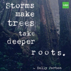 ... : storms make tress take deeper roots. -Dolly Parton @MyRetailCoach