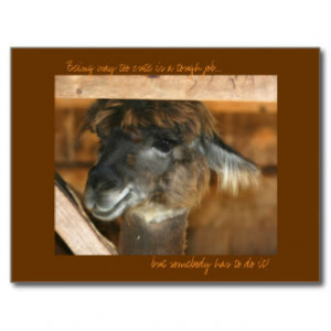 Cute Quotes Postcards