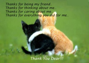 ... thanks-for-caring-about-me-thanks-for-everything-you-did-for-me-thank