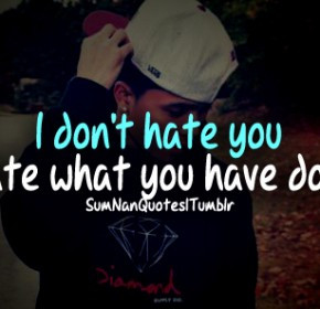 No I Don't Hate You, I Just Hate What You Have Become.