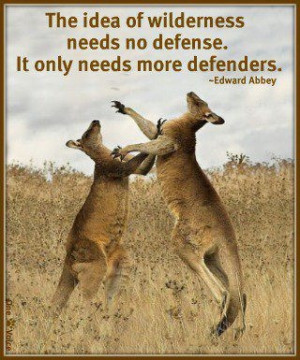 The idea of wilderness needs no defense. It only needs more defenders ...