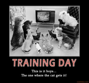 Motivational Training Posters on Training Day Video Seminars ...