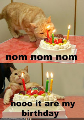 Funny Birthday Quotes and Funny Birthday Pictures