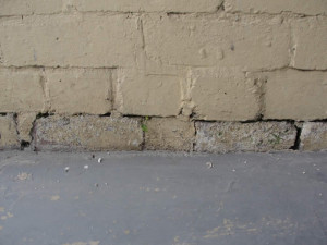 Pro Team Group provides solutions for all your rising damp, moisture ...