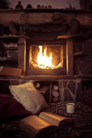 Fireplace. Warm Cozy. Reading Spot.