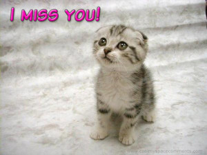 Missing You Quotes, I Miss You Sayings