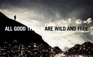 all good things, free, quotes, wild