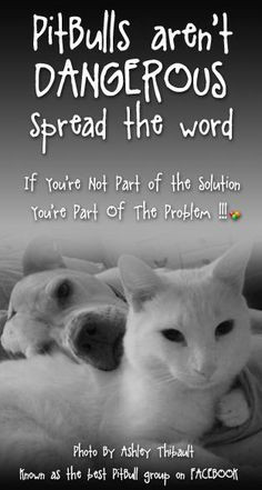 Favorite Dog & Cat Quotes and Poems