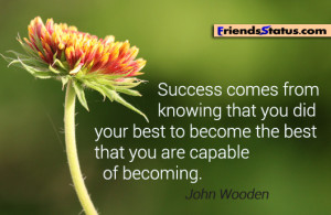 Quotes About Struggles and Success