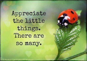 Appreciate the little things picture quotes image sayings