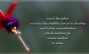 Moral discipline provides the stability quotes