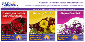 Top Flowers Quotes & Send Fresh Flowers Quotes