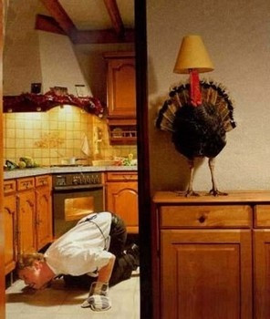 Humorous Thanksgiving