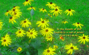 Related Pictures bible quotes inspirational bible verses