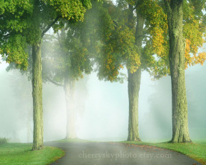 Long and Winding Road - or - Country Road - or no quote - Soft Pretty ...