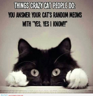 Things Crazy Cat People Do, You Answer Your Cats Random Meows With ...