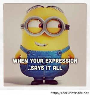 Funny Minion Quotes Tumblr Funny Minion Memes