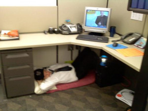 Go Back > Gallery For > Costanza Sleeping At Desk