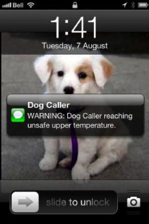 Dog Passing Away Quotes Dog_callerpuppy.jpeg