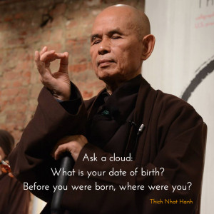 Thich-Nhat-Hanh-20140607-165024.png