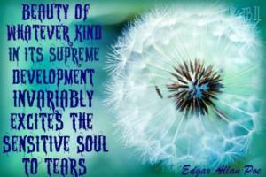 Edgar Allan Poe quote on beauty.