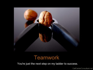 Funny Teamwork Pictures