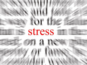 Stress and Borderline Personality Disorder