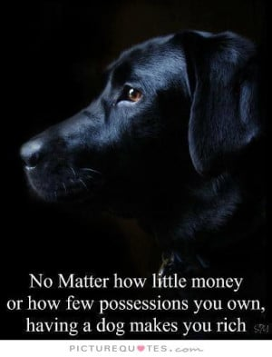 ... few possessions you own, having a dog makes you rich Picture Quote #1