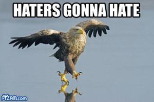 Funny Eagles (8)