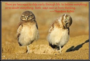 owl quotes and sayings