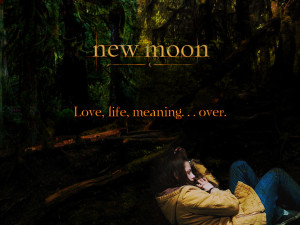 Twilight Series Love, Life, Meaning Over