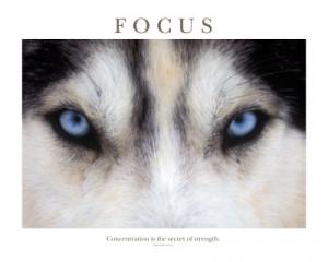 Motivational Quotes About Focus