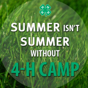 ... been to 4-H camp but I can say that summer isn't summer without 4-H