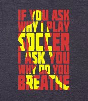 cool soccer sayings if you ask why i play soccer