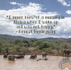 .com/conservation-volunteering/wildlife-research/african-wildlife ...