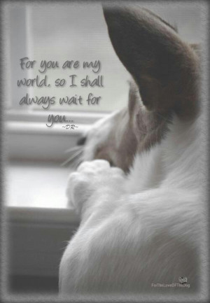 For You Are My World, So I Shall Always Wait For You.