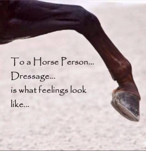 horses dressage quotes