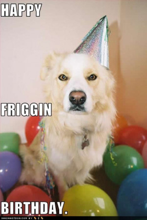 Happy Birthday Images Funny Dog