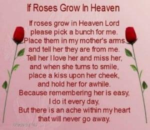 ... Mom Birthday, Happy Birthday, Mothers Day, Quotes, Birthday Wish, Miss