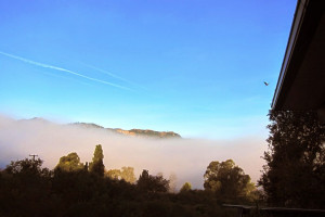 Morning fog from my house