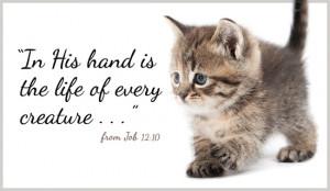 Job 12:10 - Ecard