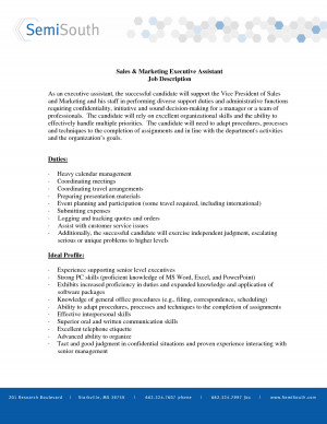 sales and marketing vice president sample job description