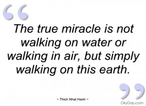 the true miracle is not walking on water thich nhat hanh