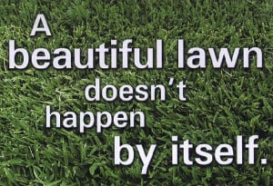 Lawn Mowing Contractors We Specialize in Complete Lawn Care and Lawn ...