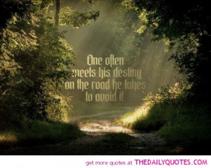 one-often-meets-his-destiny-life-quotes-sayings-pictures.jpg