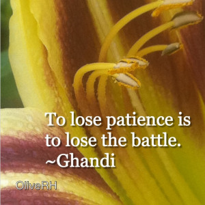 To lose patience is to lose the battle.~Ghandi Oh man! I think I lost ...