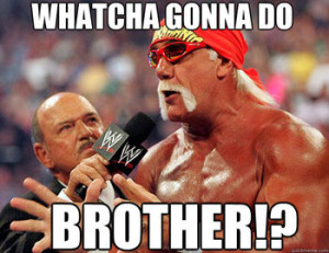 Whatcha Gonna Do, Brother, When Hulkamania Runs Wild on You?