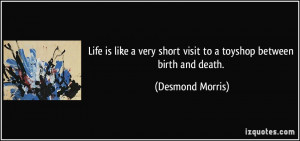 Life is like a very short visit to a toyshop between birth and death ...