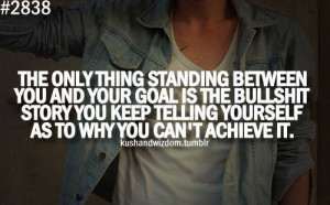 The only thing standing between you and your goal is the bullshit ...